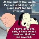 charlie  brown cartoon