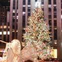 Rockefeller Tree 2009 012