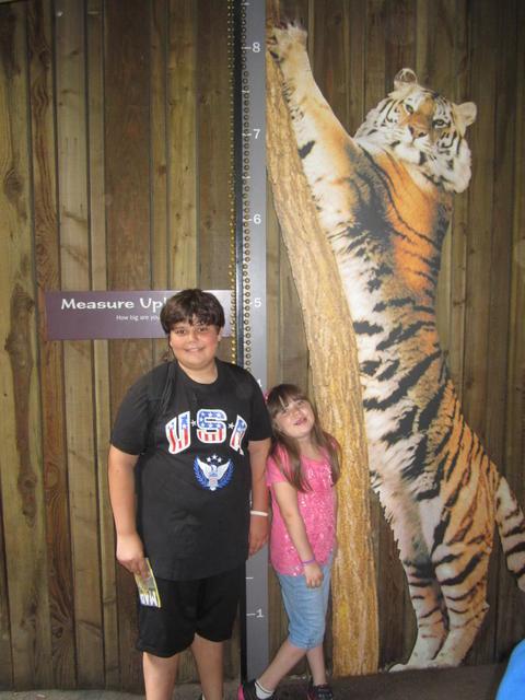 Bronx Zoo August 6 2014 021